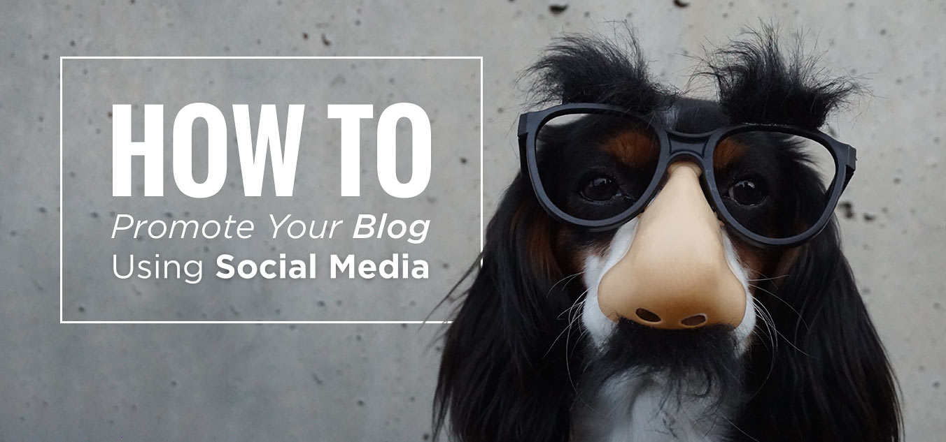 Tips For Promoting Your Blog on Social Media - PromoRepublic