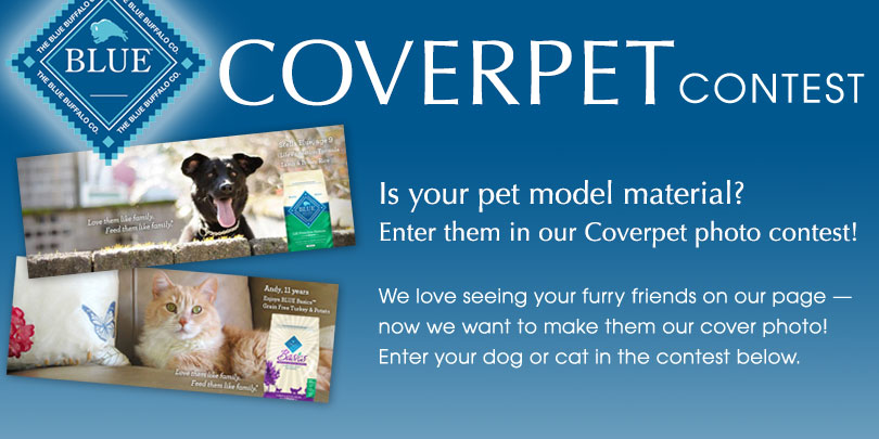 coverpet votigo contest
