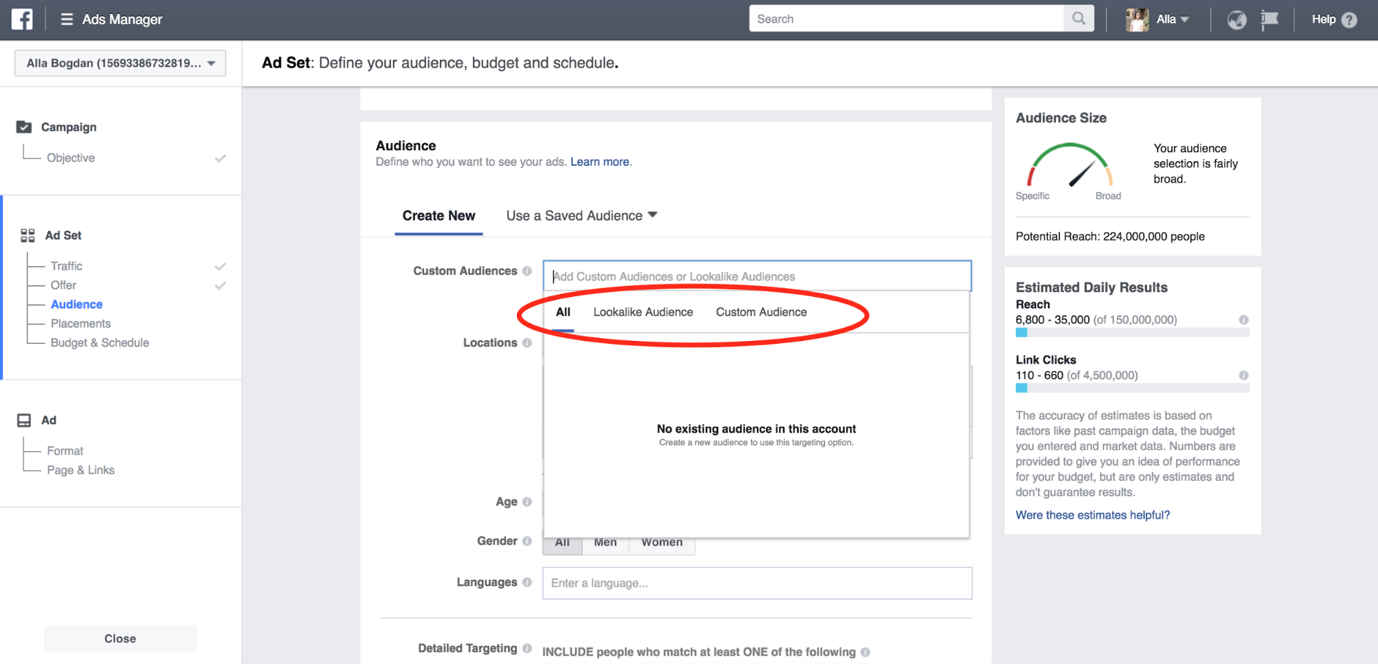 Facebook Ads audience example
