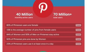 audience is using Pinterest