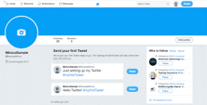 How to get the massive following on Twitter?